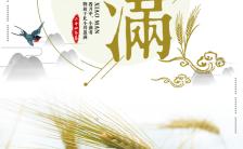 简洁中国风小满二十四节气之一企业宣传H5模板缩略图