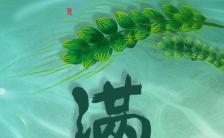 绿色清新文艺风格小满节气企业宣传H5模板缩略图