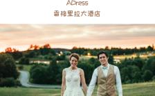 棕色时尚轻奢唯美韩式婚礼邀请函H5模板缩略图