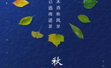 唯美二十四节气秋分企业宣传祝福推广H5模板缩略图